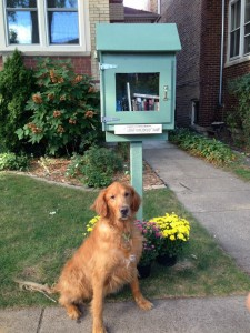 Little Free Library. Credit: Edgewater Reads / Facebook