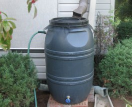 Looking To Go Green?  Free Rain Barrels To Qualified Edgewater Residents.