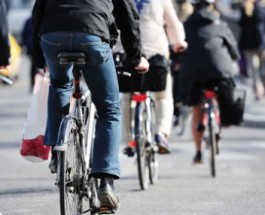 Go Edgewater Campaign To Promote Sustainable Travel Options