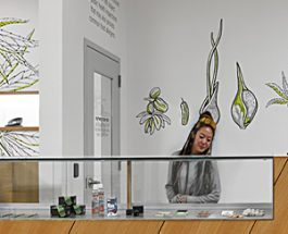 Andersonville's Marijuana Experts Set To Open New Location With 2X The Space
