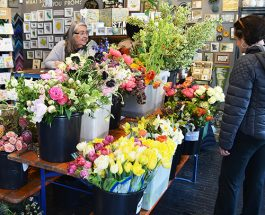 Andersonville Celebrates Earth Day Weekend With 4th Annual Flower And Garden Show