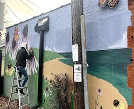 New Andersonville Mural Brings A Bit Of Summer To The Area