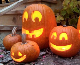 Edgewater Halloween Happenings To Help Get You Into The Spirit!