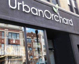 Urban Orchard Closing, May Be Replaced By Corporate Chain Chipotle