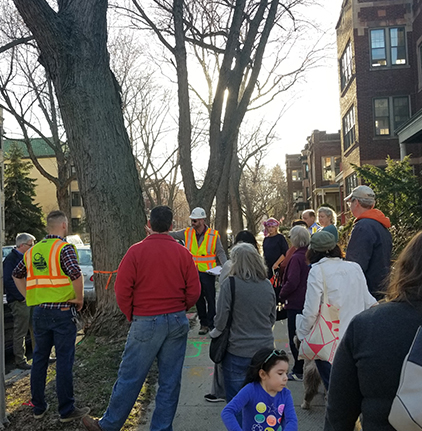 Pilot Program That Could Save Hundreds Of Chicago Trees Has Begun In Andersonville